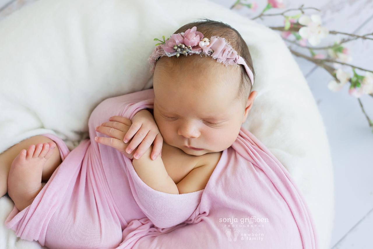 Indie-Newborn-Brisbane-Photographer-Sonja-Griffioen-17.jpg