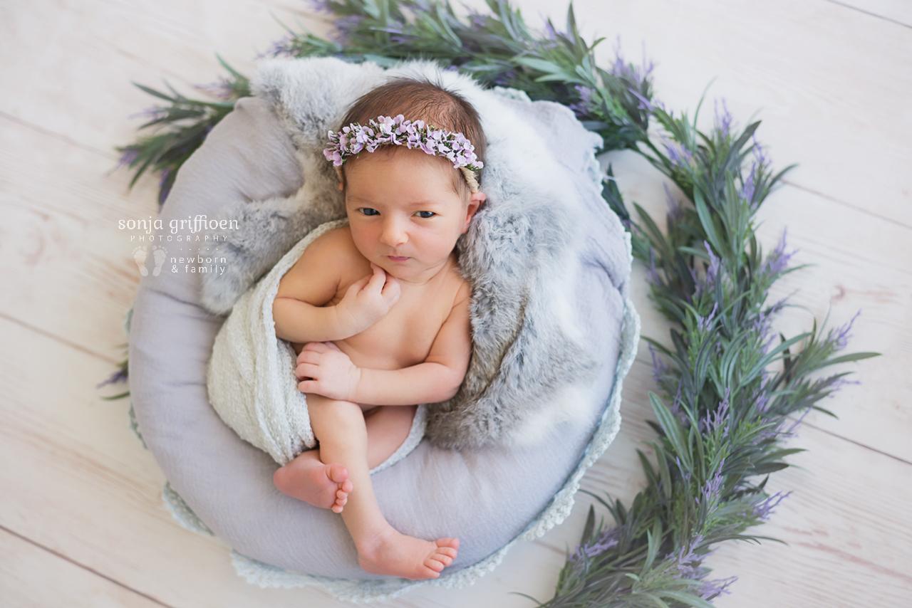 Maple-Rose-Newborn-Brisbane-Newborn-Photographer-Sonja-Griffioen-16.jpg