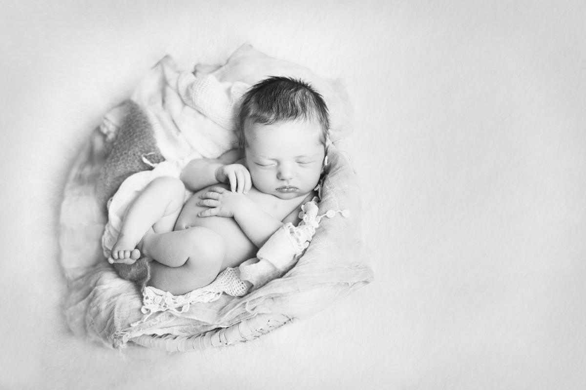 Brisbane Newborn Photography, Brisbane Newborn Photographer Sonja Griffioen