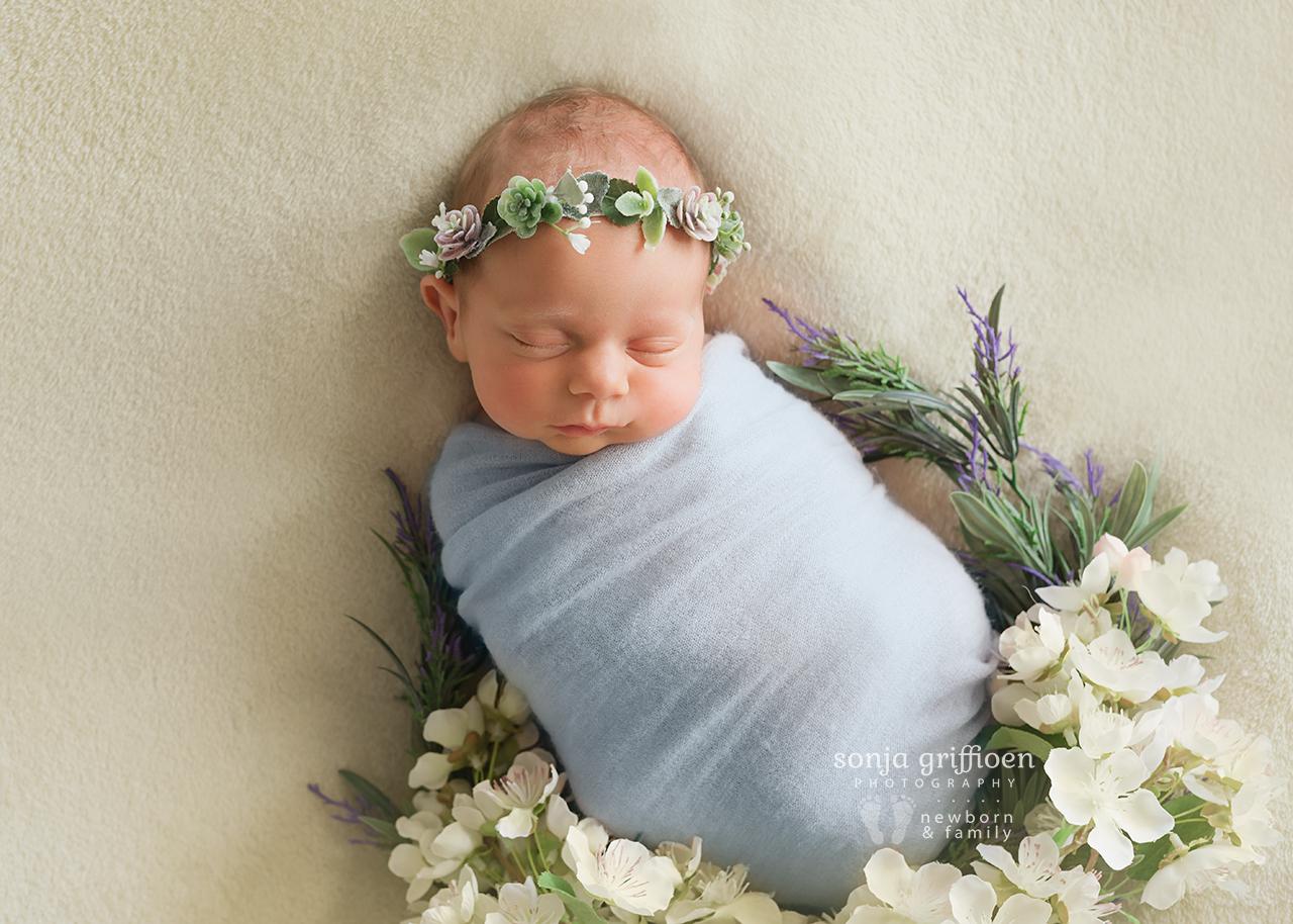 Vivienne-Newborn-Brisbane-Newborn-Photographer-Sonja-Griffioen-16.jpg